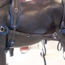 Pair Horse BioThane-Maraton Harness With Breeching